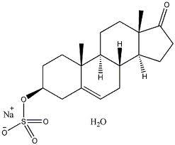 Dehydroepiandrosterone Model 53 43 0