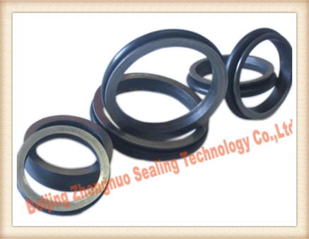 Do Type 205 5 280mm Floating Seal