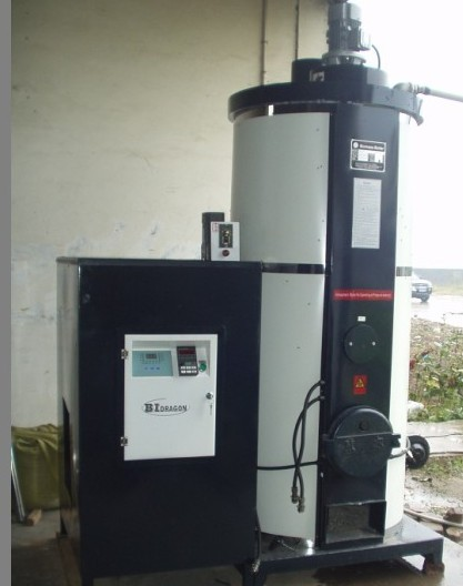 Domestic Pellet Fired Hot Water Boilers