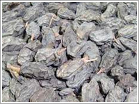 Drukh Raisins Being Among The Trusted Suppliers And Exporters Of India We Offer A Wide Range High Qu