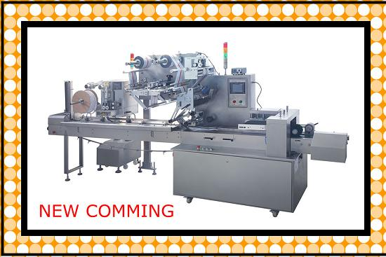 Dzp250e Pillow Packing Machine