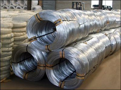 Electro Galvanized Wire Exporter Mesh From Anping Xufeng