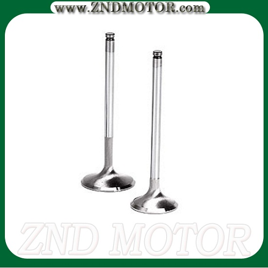 Engine Valve With High Quality And Reasonable Price