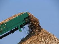Eucalytus Wood Chip Long Phung Phat Imex Co Ltd