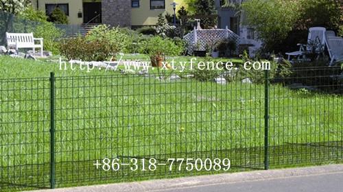 Euro Netting Fence Sheep