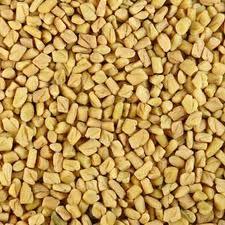 Fenugreek Seeds Exporter Or Seller