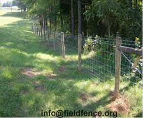 Field Fence Heng Shui
