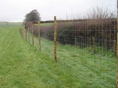Field Fence High Tensile Wire And Low Carbon Steel