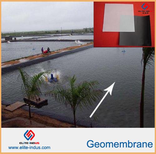 Fish Farm Pond Tunnel Liner Eva Ecb Geomembrane