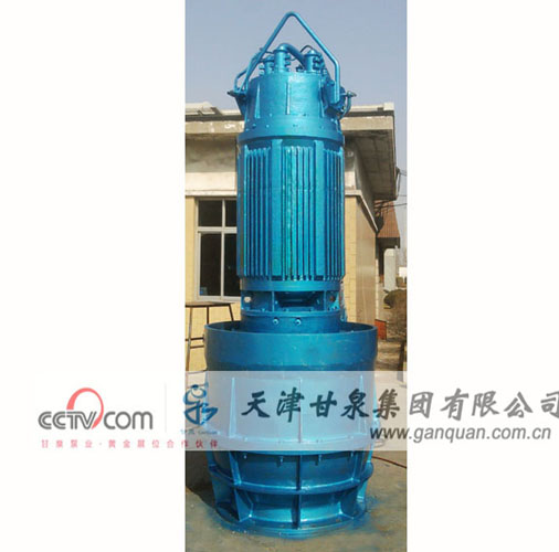 Flood Pump Axial Flow Water
