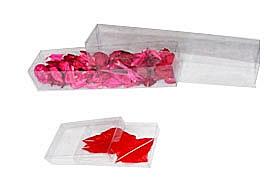 Folding Packaging Box
