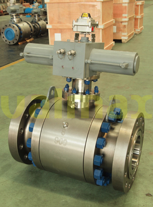 Forging Ball Valve 900 Lb 8 Inch Asme B16 5 Peek