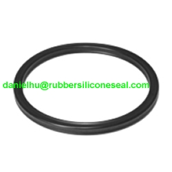 Fpm Fkm Rubber Seals