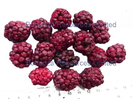 Freeze Dried Blackberry Whole