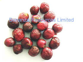 Freeze Dried Cherry Whole