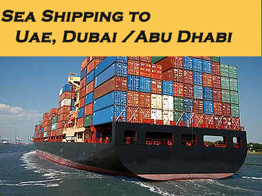 Freight Forwarding Door To Service Sea Ocean Forwarder