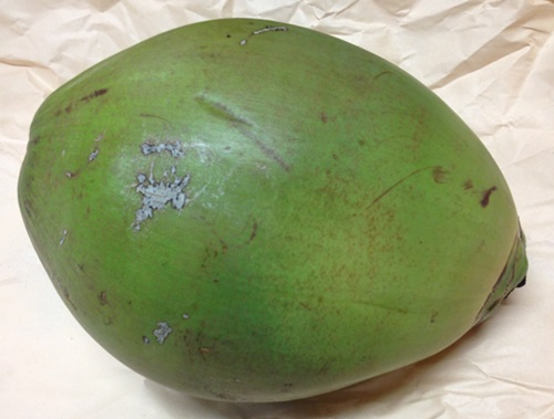 Fresh Young Green Coconuts From Costa Rica