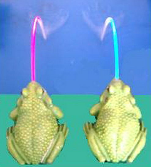 Frog Spitter Water Spray With Led Color Light