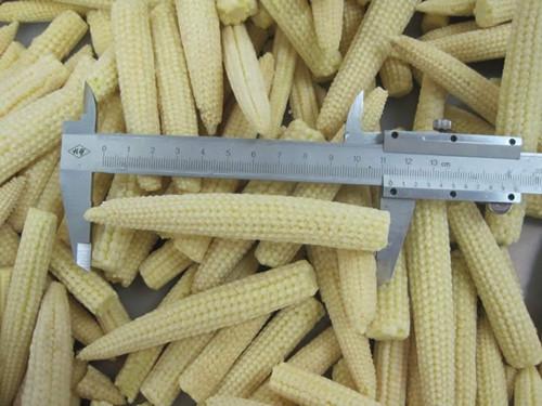 Frozen Baby Corn Whole