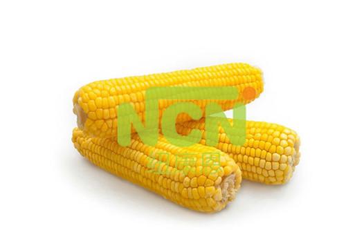 Frozen Yellow Waxy Corn