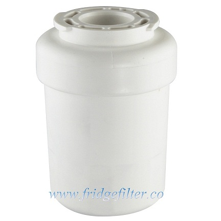 Ge Refrigerator Water Filter Mwf