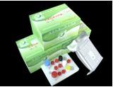 Gentamicin Elisa Test Kit