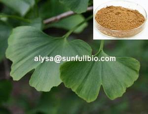Ginkgo Biloba Extract 24 6