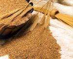 Grains Wheat Grade A