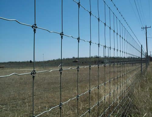Grassland Fence Galvanized