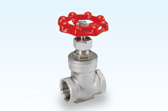 Gt 200 Stainless Steel Gate Valve Yueng Shing