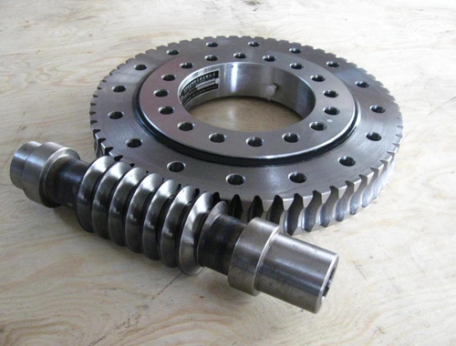 Hanwei Customized Precision Worm Gear Wheel