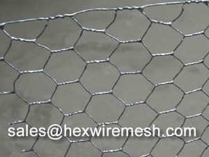 Hexagonal Wire Mesh For Chicken Or Gabion
