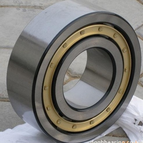 High Precision Cylindrical Roller Bearing Nu1022