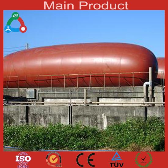 High Quality Big Size Biogas Plant