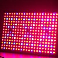 High Quality Herifi Bs003 Led Grow Light 600w
