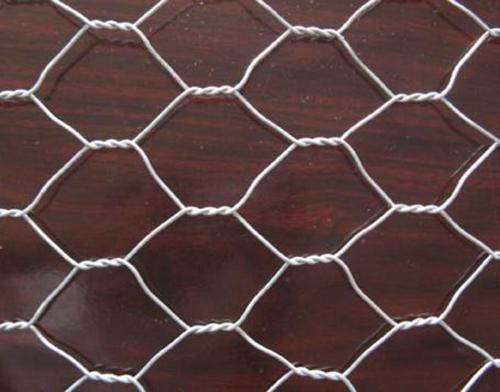 High Quality Hexagonal Netting Chicken Mesh
