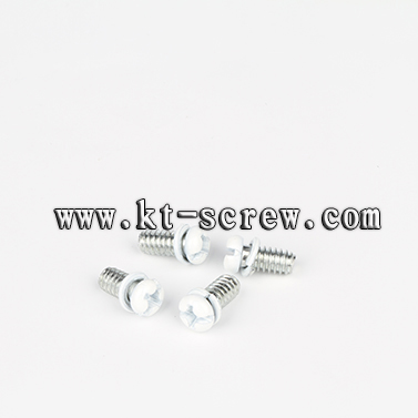 High Quality Phillips Painted Head Combination Screw With Spring Washer