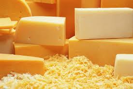 High Quality Poland Mozzarella Cheese