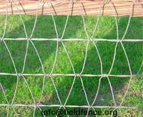 High Quality V Mesh Horse Fencing