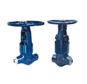 High Temperature And Pressure Power Station Globe Valve