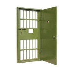 Hinged Steel Cell Doors