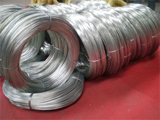 Hot Dipped Galvanized Wire Exporter Mesh From China France