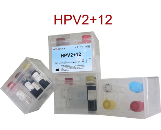 Hpv16 18 12 Hrhpv Genotyping Real Time Pcr Kit