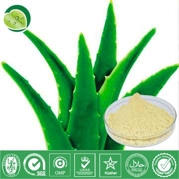 I Want To Sell Aloe Vera Extract
