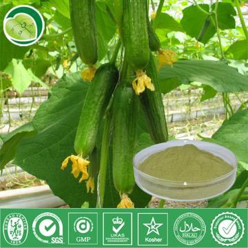 I Want To Sell Cucumber Extract