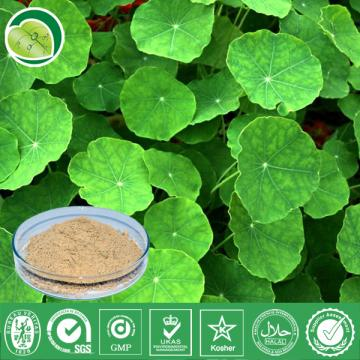 I Want To Sell Hydrocotyle Asiatica Extract