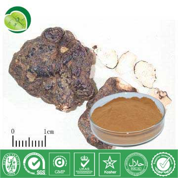 I Want To Sell Polyporus Umbrellatus Extract