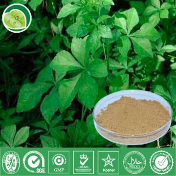 I Want To Sell Siberian Ginseng Extract