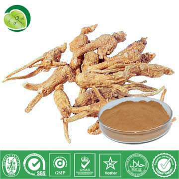 I Want To Sell Some Angelica Sinensis Extract