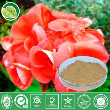 I Want To Sell Some Geranium Extract